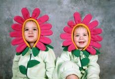 девушки цветка Стоковые Фотографии RF