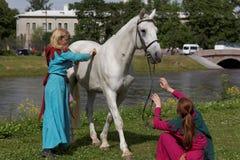 Девушки чистя лошадь щеткой Стоковая Фотография