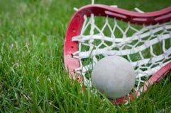 девушки шарика засевают серый головной lacrosse травой Стоковая Фотография