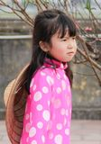 Девушки Ittle въетнамские в национальном костюме со шляпой в китайском Новом Годе стоковое фото