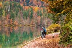 Девушки trekking в древесине Стоковые Изображения RF