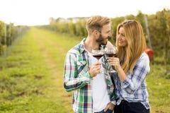 Дегустация вин в винограднике стоковое фото rf