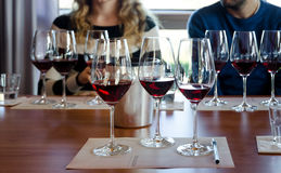 Дегустация вин в Langhe Италии стоковая фотография