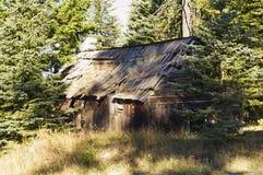Дезертированная бревенчатая хижина в древесинах Стоковые Изображения RF