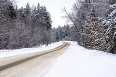 Дезертированная дорога зимы в лесе Стоковая Фотография