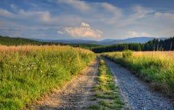 Дезертированная дорога в полях Стоковая Фотография