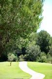 Дезертированная дорога на деланной маникюр лужайке Стоковое фото RF