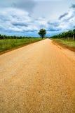 Дезертированная дорога с деревом и облачным небом Стоковая Фотография