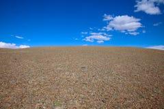 дезертированная панорама Стоковое Фото