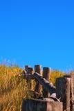 Дезертированные поле и лужок Стоковое Фото