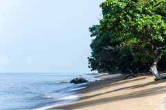 Дезертированный песчаный пляж с зелеными деревьями на побережье Камеруна около Kribi стоковое фото