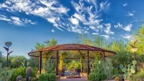 Дезертируйте ботанический сад Феникс Az, газебо с яркими голубыми небесами, красивыми облаками, и видом кактуса galore стоковые фотографии rf