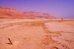 Дезертируйте в Израиле на области мертвого моря Стоковое Изображение RF