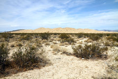 Дезертируйте ландшафт (пустыня Mojave) стоковое фото