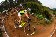 Действие велосипедиста девушки MTB Стоковая Фотография