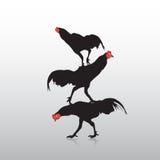 Действие цыпленка Стоковые Фотографии RF