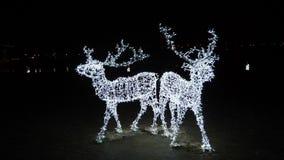 Декабрь в Каунасе, Литве Атмосфера рождества города на ноче Олени Illuminanited перед замком Каунаса акции видеоматериалы