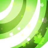 Декоративная графическая предпосылка с зелеными листьями Стоковые Фотографии RF