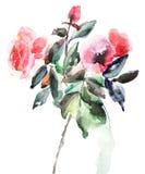 Декоративная иллюстрация цветков роз Стоковое Изображение RF