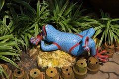 Декоративная керамическая лягушка в саде Стоковые Изображения RF