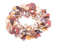 Декоративная крона сделанная seashells Стоковые Изображения