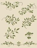 Декоративная оливковая ветка Стоковые Изображения RF