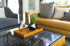 Декоративная подушка на кожаной софе в живущей комнате Стоковые Фото