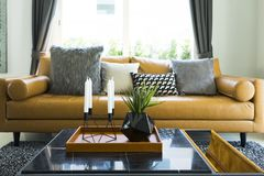 Декоративная подушка на кожаной софе в живущей комнате Стоковые Фотографии RF