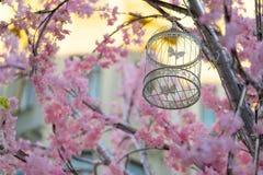 Декоративная смертная казнь через повешение клетки птицы на дереве Стоковые Фото