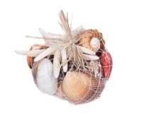 Декоративная сумка различных seashells Стоковое Изображение RF