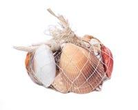 Декоративная сумка различных seashells Стоковая Фотография RF