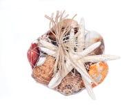 Декоративная сумка различных seashells Стоковое фото RF