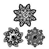 Декоративные цветки установленной конструкции Стоковое фото RF