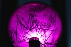 Декоративная фиолетовая часть лампы вольфрама стоковые изображения rf