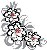 декоративная флористическая иллюстрация Стоковые Фотографии RF