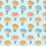 Декоративная флористическая безшовная предпосылка света маргаритки текстуры Camomiles картины с цветками Стоковая Фотография RF