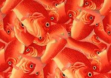Декоративное искусство оранжевых рыб в Киото, Японии Стоковая Фотография