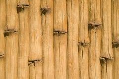 Декоративное конкретное украшение фасада в парке Стоковое Изображение RF