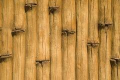 Декоративное конкретное украшение фасада в парке Стоковые Фотографии RF
