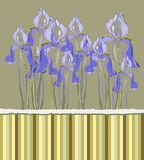 Декоративное приглашение картины с цветками радужки, иллюстрация штока