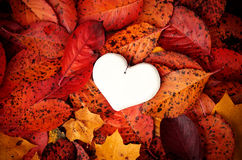 Декоративное handmade сердце Стоковые Изображения