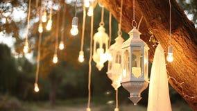 Декоративные античные электрические лампочки вися в древесинах, стеклянный фонарик нити стиля edison сток-видео