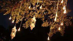 Декоративные античные электрические лампочки вися в древесинах, стеклянный фонарик нити стиля edison, сад украшения лампы на акции видеоматериалы