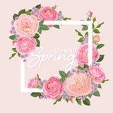 Декоративные винтажные розовые розы и бутон с листьями в белой рамке Стоковые Изображения RF