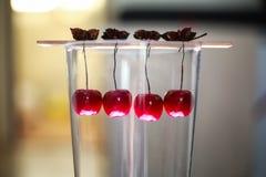 Декоративные вишни вися внутри стеклянной вазы Стоковые Изображения