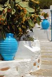 Декоративные голубые amphorae с шиповатыми грушами на заднем плане, деревня Kastro, остров Sifnos, Греция Стоковая Фотография