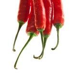 Декоративные горячие перцы стоковое изображение