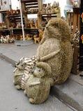 Декоративные ежи Стоковая Фотография RF