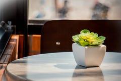 Декоративные керамические белые вазы на деревянном столе, винтажном тоне Стоковое Изображение RF