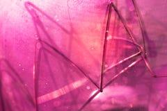 Декоративные красные детали лампы вольфрама, макрос стоковое изображение